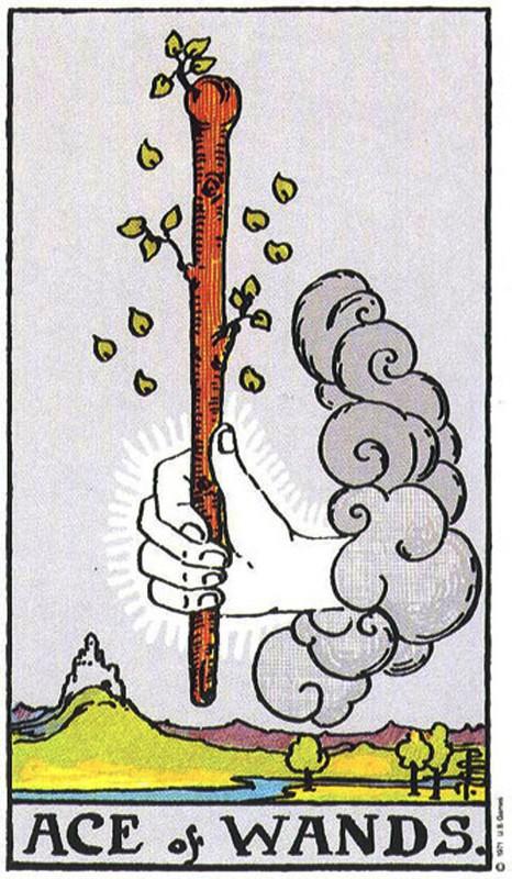 塔罗牌牌意:权杖一正位与权杖一逆位的解析与含义插图