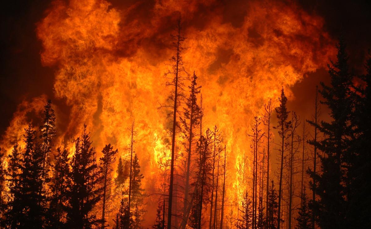 當 12 星座都化身成自然災害,會變成怎樣呢?